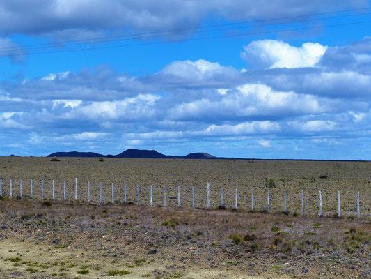 Nur noch karge Landschaft im Süden Patagoniens