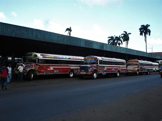 'Diablo Rojo' - Bus Terminal in Colón
