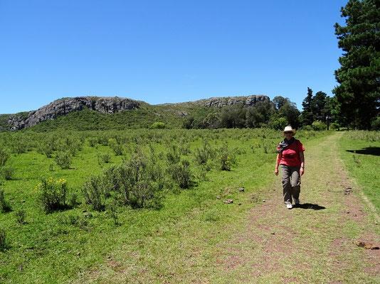 Wanderung auf den Cerro