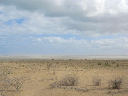Ein Sandsturm baut sich auf