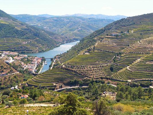 Blick auf Pinhão im Douro-Tal