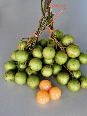 Mamón - bitter-süsse Frucht mit einem grossen Kern in der Mitte und etwas schleimigem Fruchtfleisch