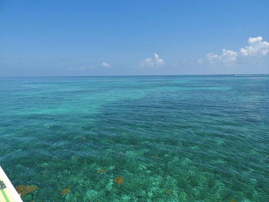 ....über klares blaues Wasser