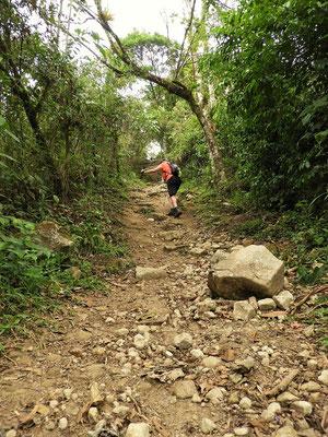 Der steile Weg nach oben....