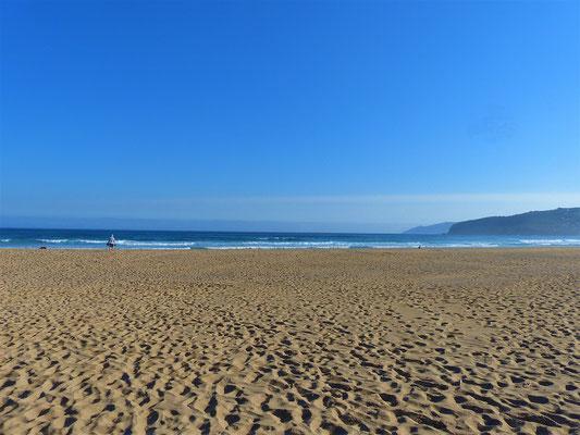Besuch am einsamen Strand bevor es zu den Kliffs hoch geht
