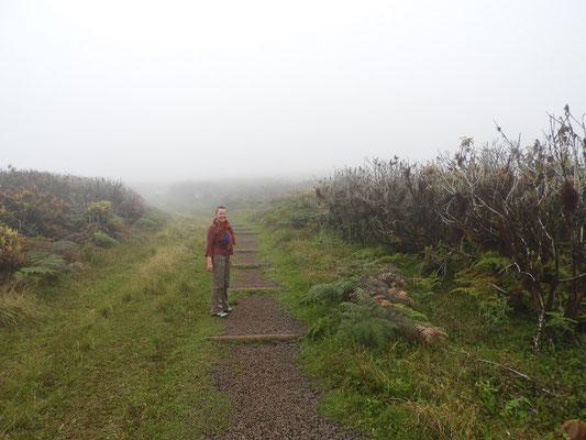 Hoch geht's - im dicken Nebel - zum Kratersee....