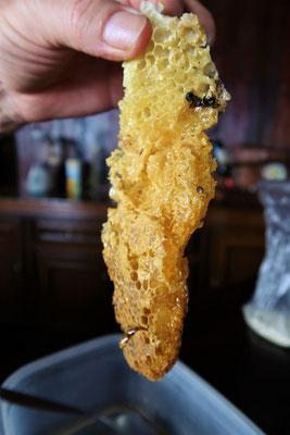 ....mit Honig direkt aus der Wabe