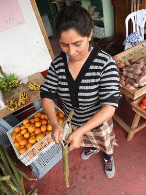 Guaba-Frucht