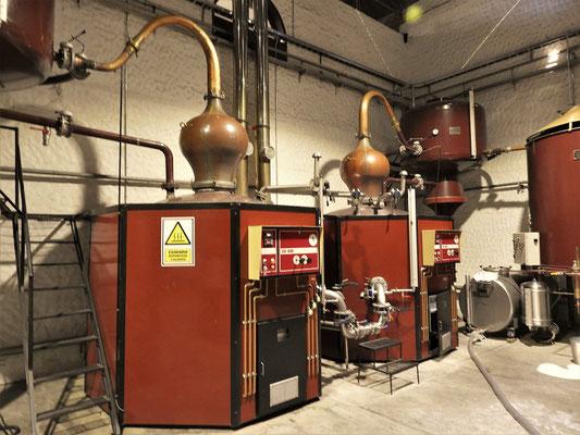 Destillation des Singani