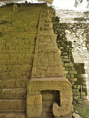 ....Die 63 Stufen beschreiben die Herrscherabfolge von Copán innerhalb von 200 Jahren.