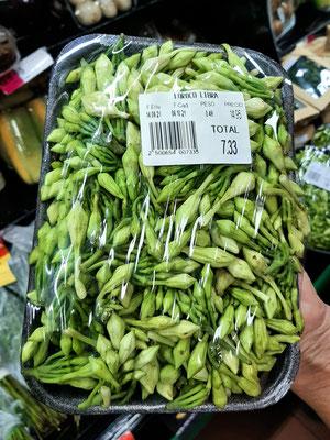 Loroco Blume - ein wichtiger Nahrungszusatz in El Salvador und Guatemala - wird in Suppen und Fleischsaucen und in Pupusas verwendet.