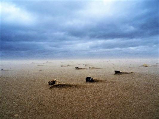 Strand vor....