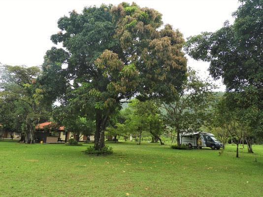 Unser Camping in La Yeguada....