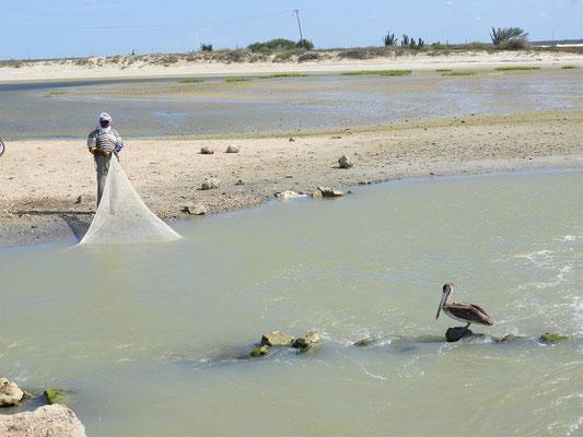 ....und Pelikane und Fischer warten auf der anderen Seite auf die mitgeführte Beute