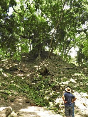 Es gibt noch viel zu tun - unter jedem Hügel liegen Schätze verborgen