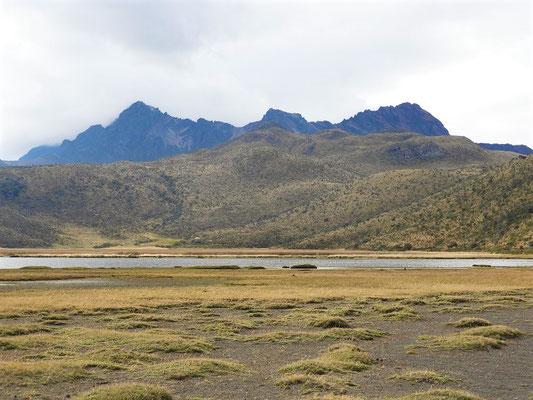 Die Fledermaus oder der Vulkan Rumiñahui