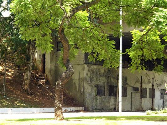 Die Kehrseite der Medallie - es gibt in São Paulo viele Obdachlose, die unter Brücken ein zuhause gefunden haben....