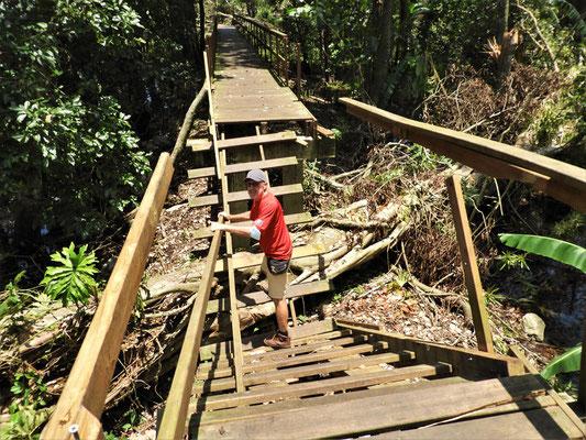 Kletterpartie über Laufsteg