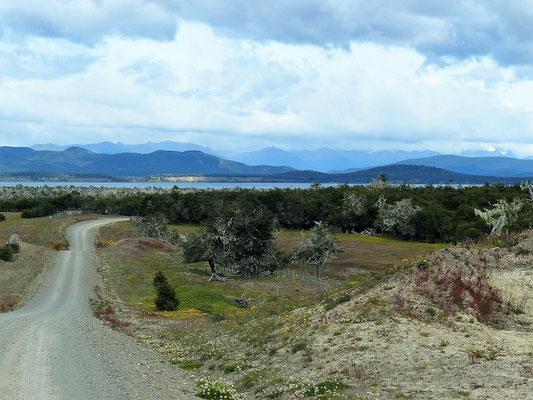 Blick auf den Lago Yehuin
