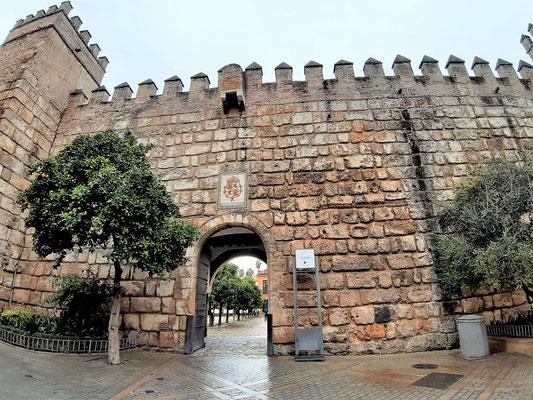 Palastmauern....