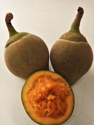 Zapote oder Chupa Chupa - Frucht aus dem Regenwald. Das faserige, etwas mehlige Fruchtfleisch schmeckt leicht süsslich ähnlich einer Aprikose