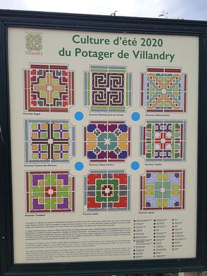 Pflanzpläne für 2020