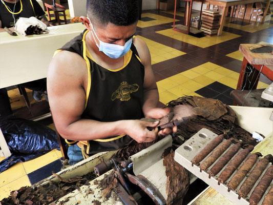 ....für diese Puros brauchts zwischen 19 und 21 Gramm Tabak....