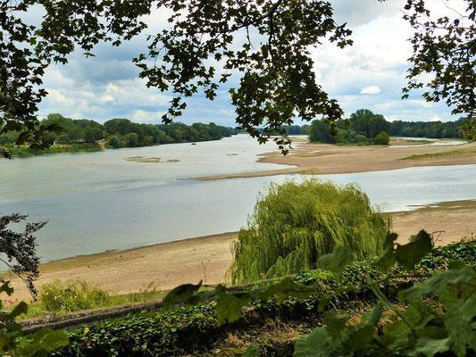 Zusammenfluss von Loire links und Vienne rechts