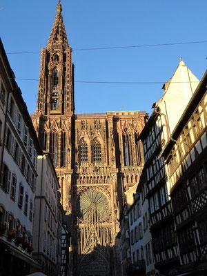 Kathedrale von Strassburg