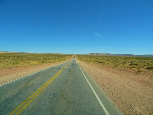 Fahrt durch die Wüste nach Zapala