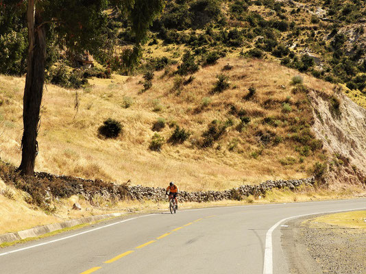 Röbä auf dem Weg zum 4390m hohen Pass Abra Condorcenca