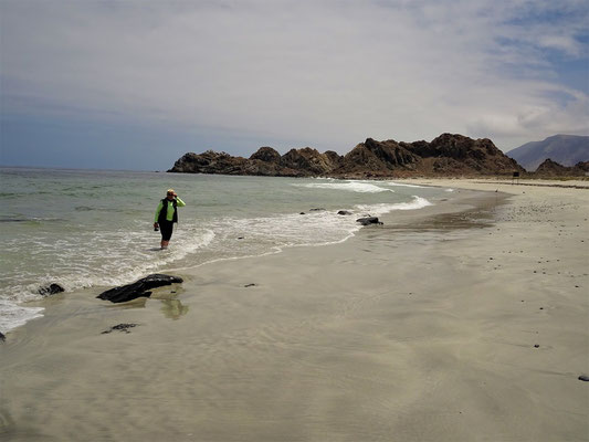....am eiskalten Pazifik!  Brrr....das erste und letzte Mal im Wasser :o)