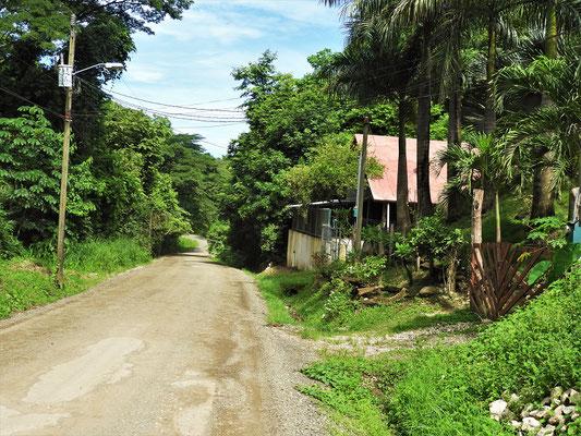 Zu Beginn unserer Fahrt nach El Ostional ist die Strasse noch in Ordnung