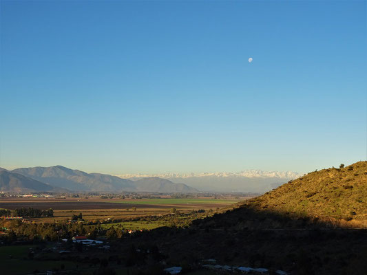 Blick über das Weingebiet bis hin zu den Anden