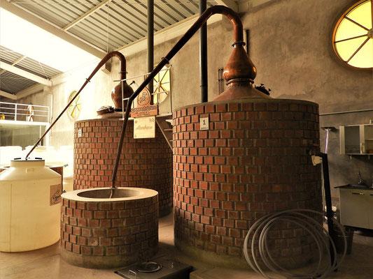 Hier wird aus dem Wein Pisco gebrannt