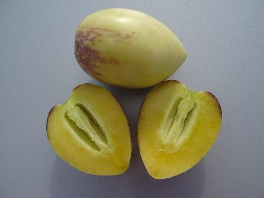 Pepinos dulces - Süsse Gurken - schmecken wie Honigmelonen