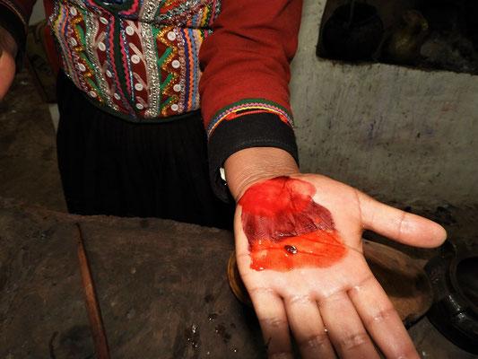 Die zerdrückten Cochinillas und - je nach Zutaten - erhält man verschiedene Rottöne