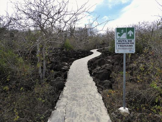 Weiter geht es durch die Vulkanlandschaft
