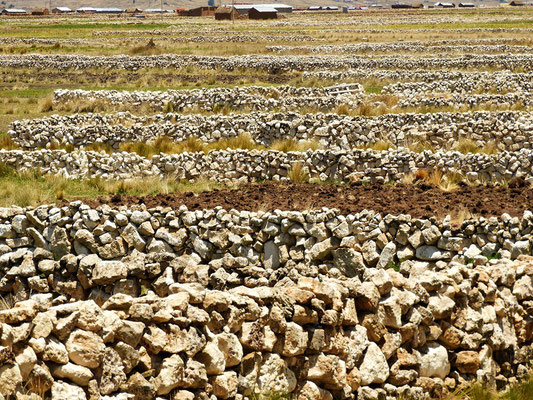 Steinmauern wohin man schaut
