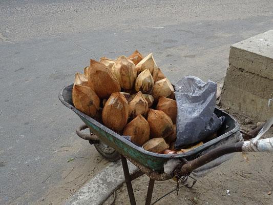 Verkauf von Kokosnüssen