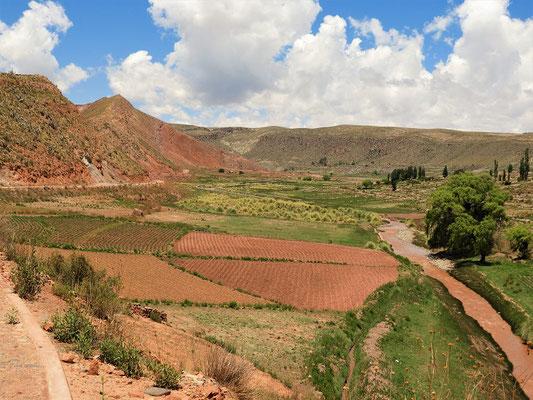 Fahrt durch das fruchtbare Tal nach Cayara