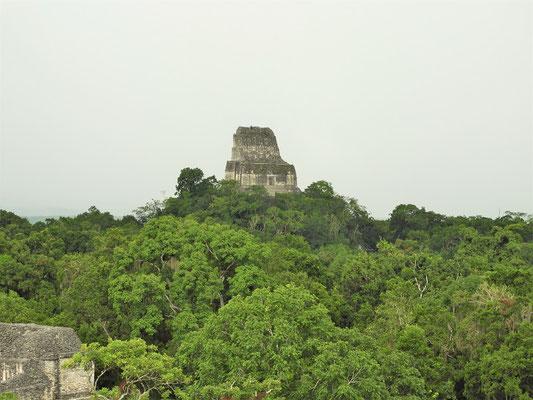 Die 65m hohe Tempelpyramide, von wo wir bis zum Horizont blicken konnten