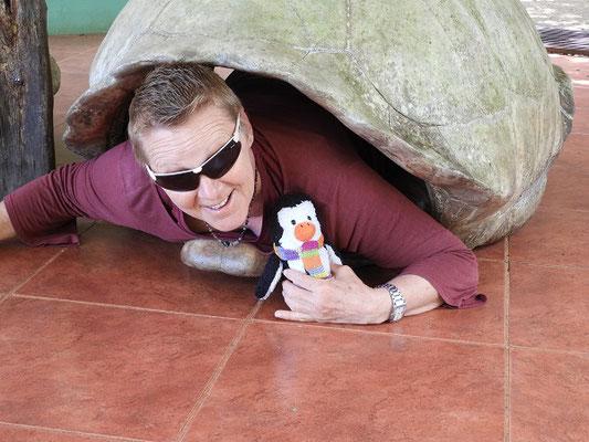 Grosi und ich spielen Schildkröte