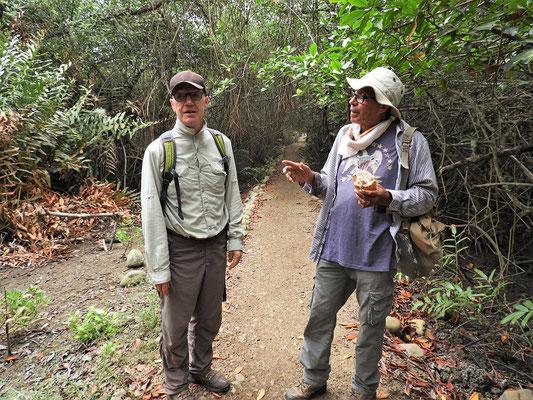 Gut eingepackt geht es durch den Mangroven-Wald zum Boot