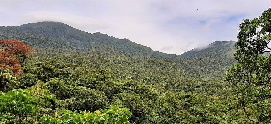Vulkan Tenorio I links und II rechts