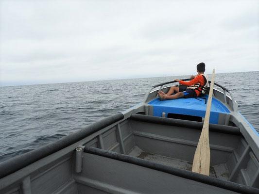 Ausschau halten nach den Walen
