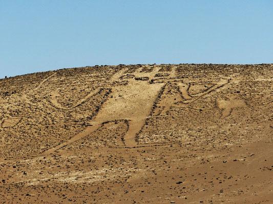 Mit ca. 86m die grösste Geoglyphe der Atacama