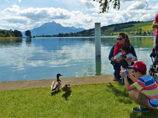 Seraina möchte gerne Enten streicheln! Vierwaldstättersee mit Pilatus