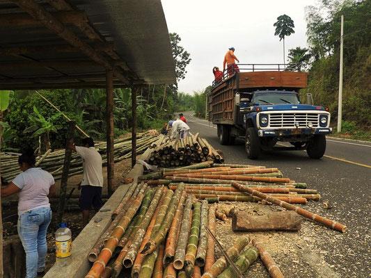 Bambus wird angeliefert....