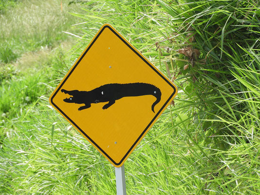 ....sogar Krokodile und....